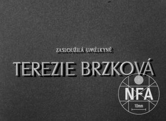 Meritorious Artist Terezie Brzková